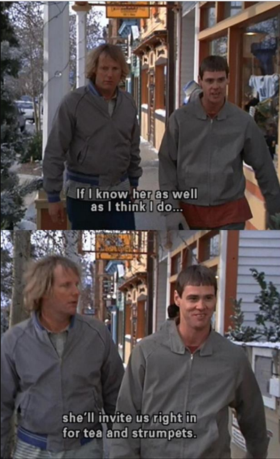 51+ Dumb and Dumber Quotes, Going To Make Your Days
