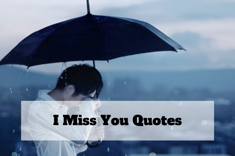 funny miss you quotes