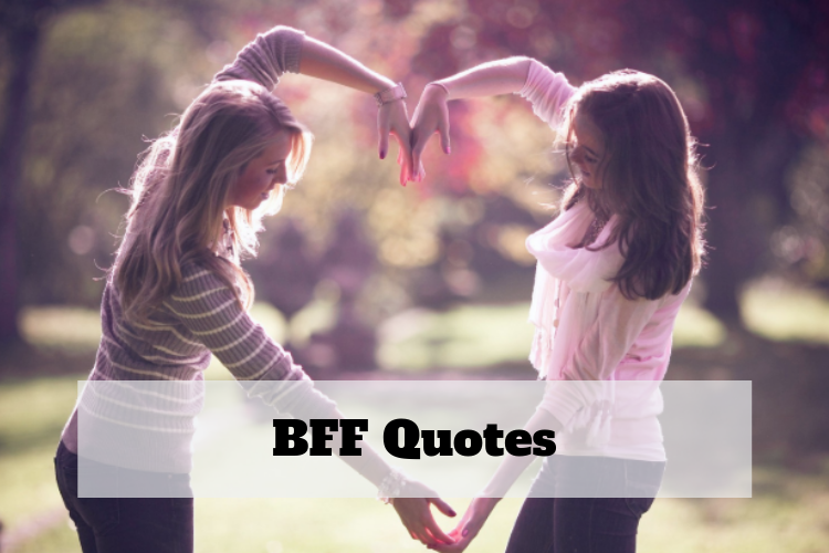 friends like sisters quote