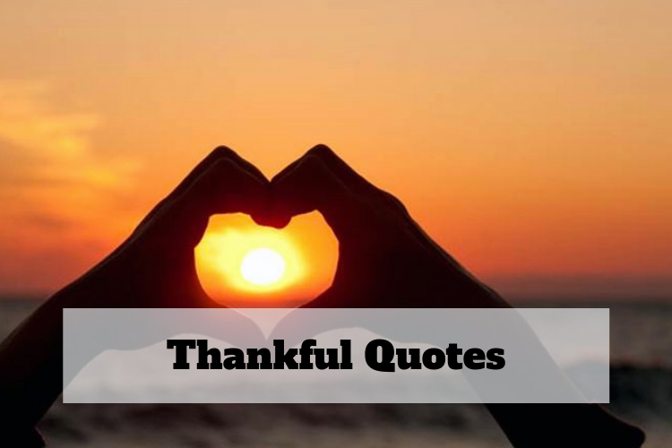 thankful for today quotes