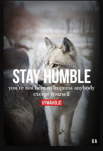 wolf pics with sayings
