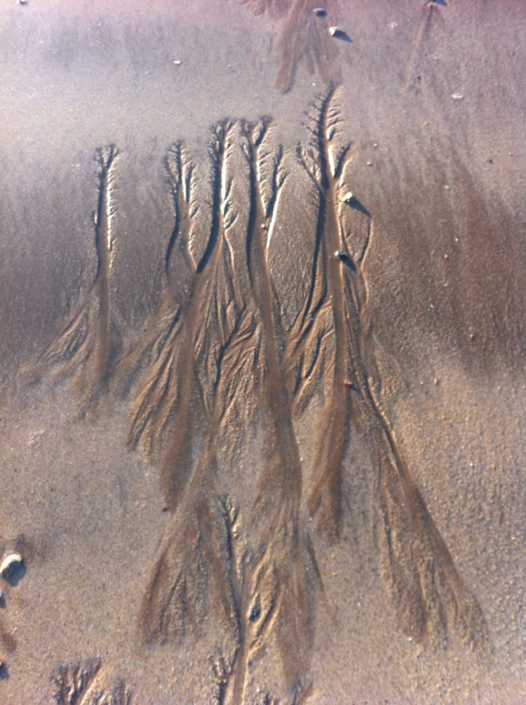 white brown sand texture