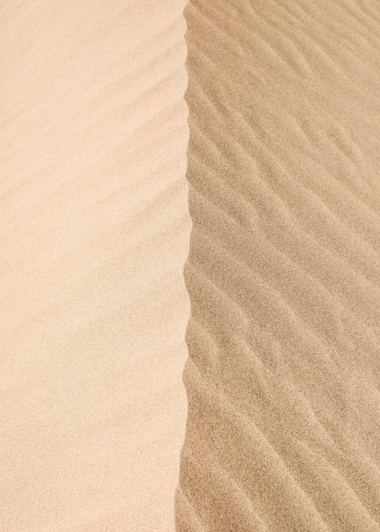 sims 4 sand texture