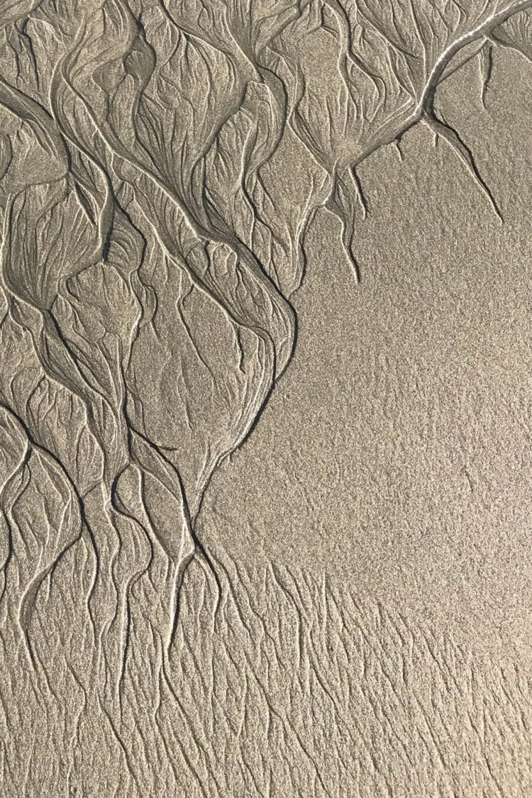 free sand texture 3d