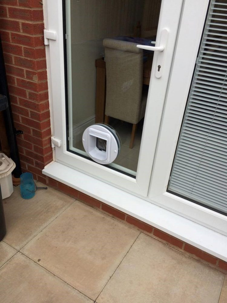 cat door microchip activated