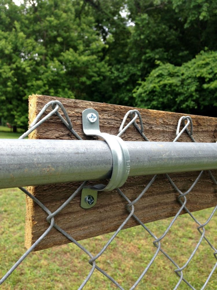 chain link fence landscaping