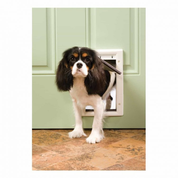 dog door diy