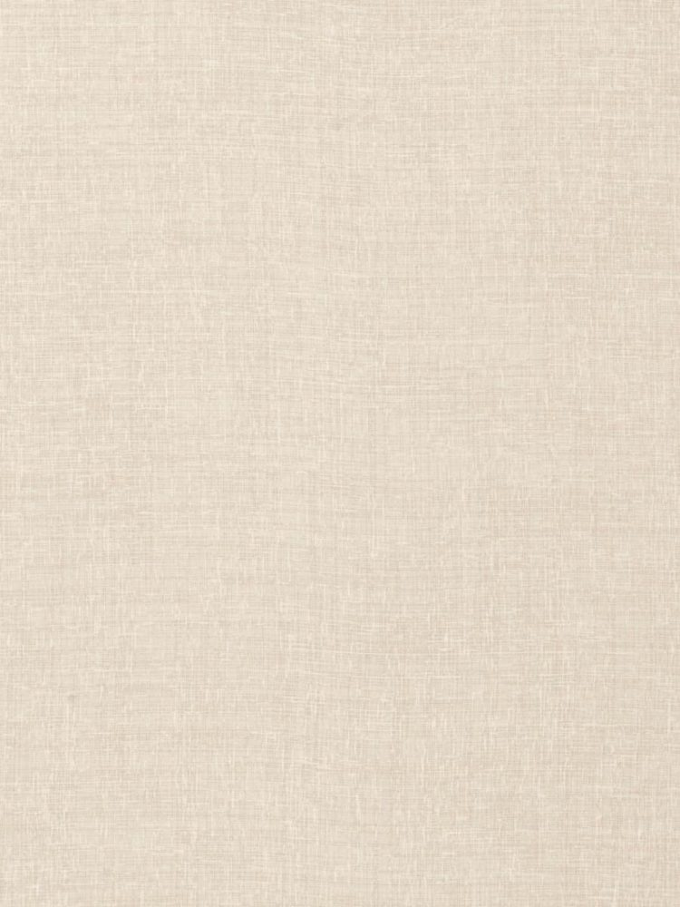 old parchment paper texture background 2