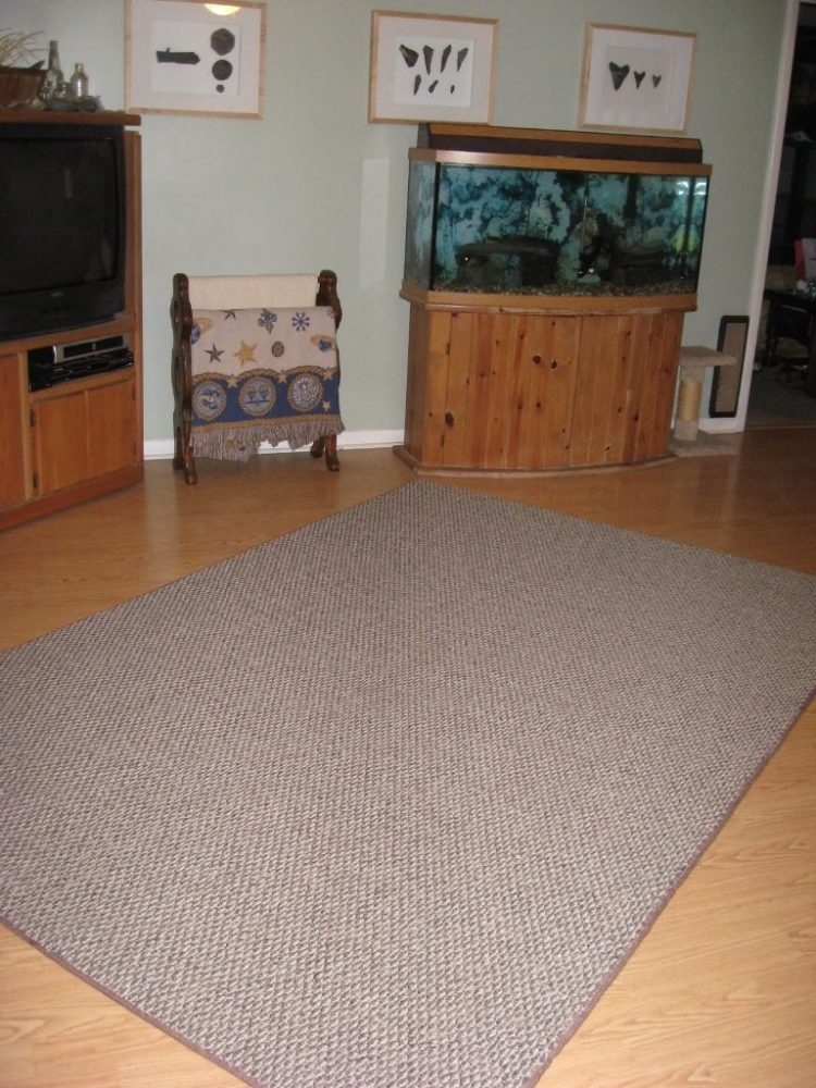indoor outdoor carpet in wet basement