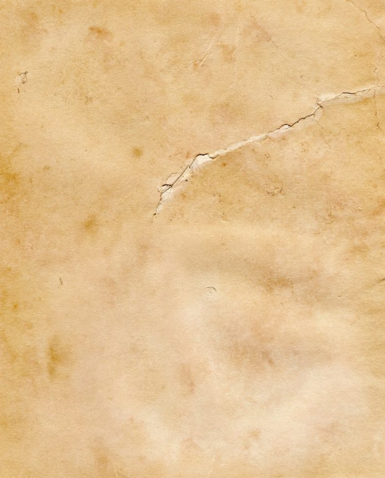 parchment paper texture download 10