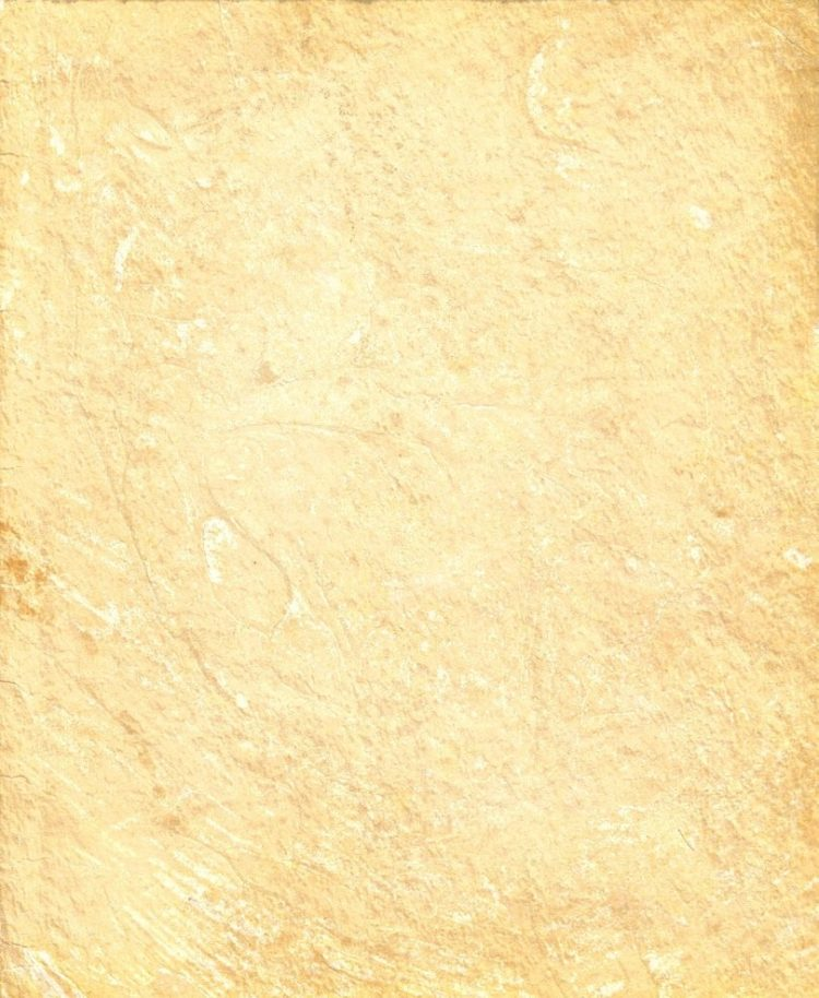 dirty parchment texture 2