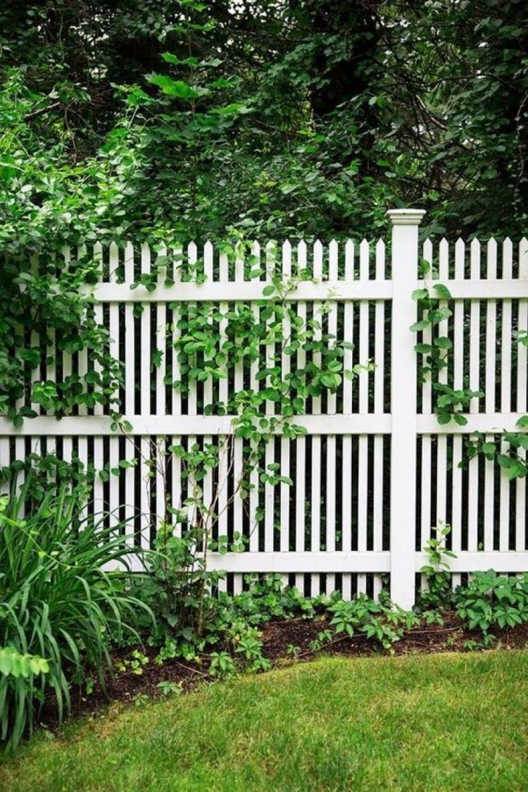 white picket fence definition