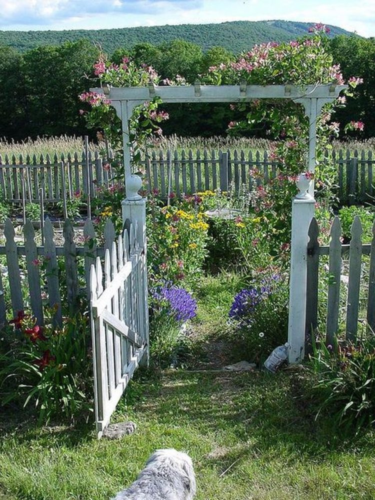 picket fence urban dictionary