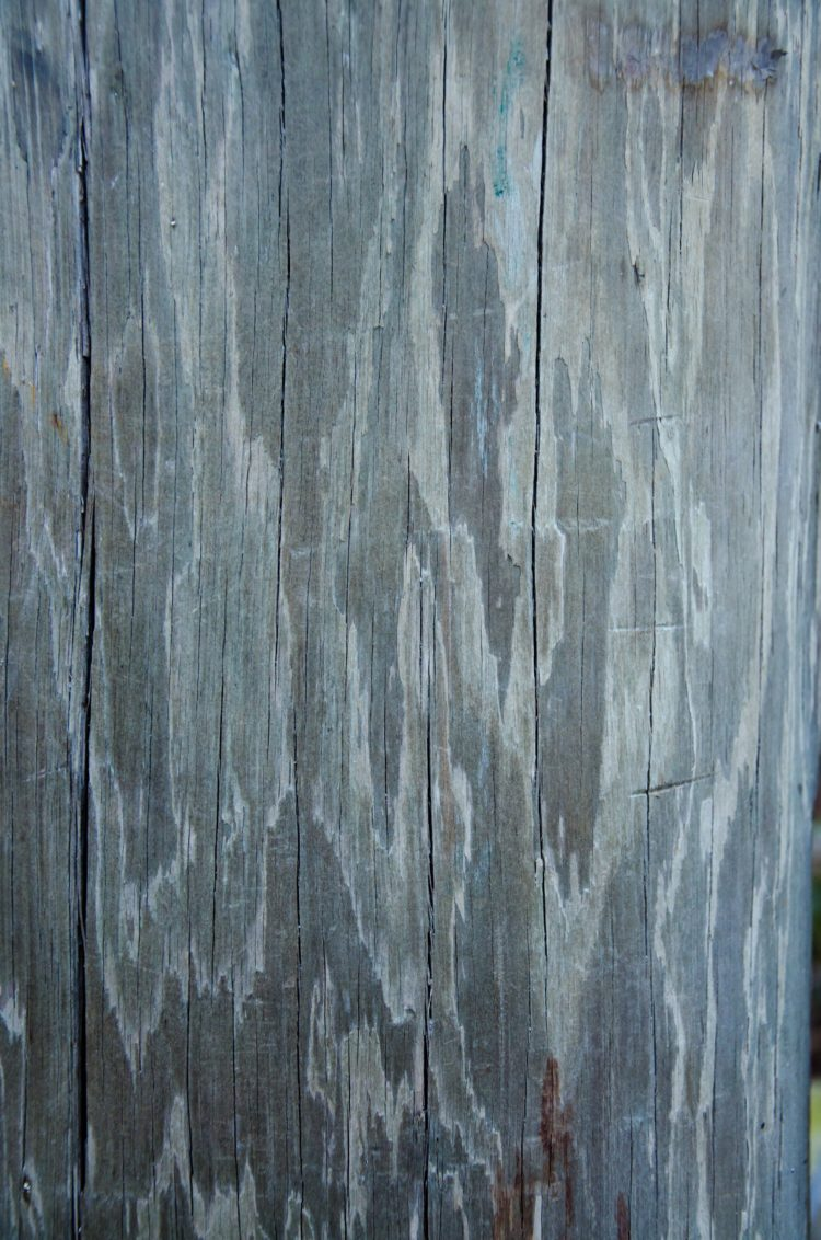 wood texture drawing easy