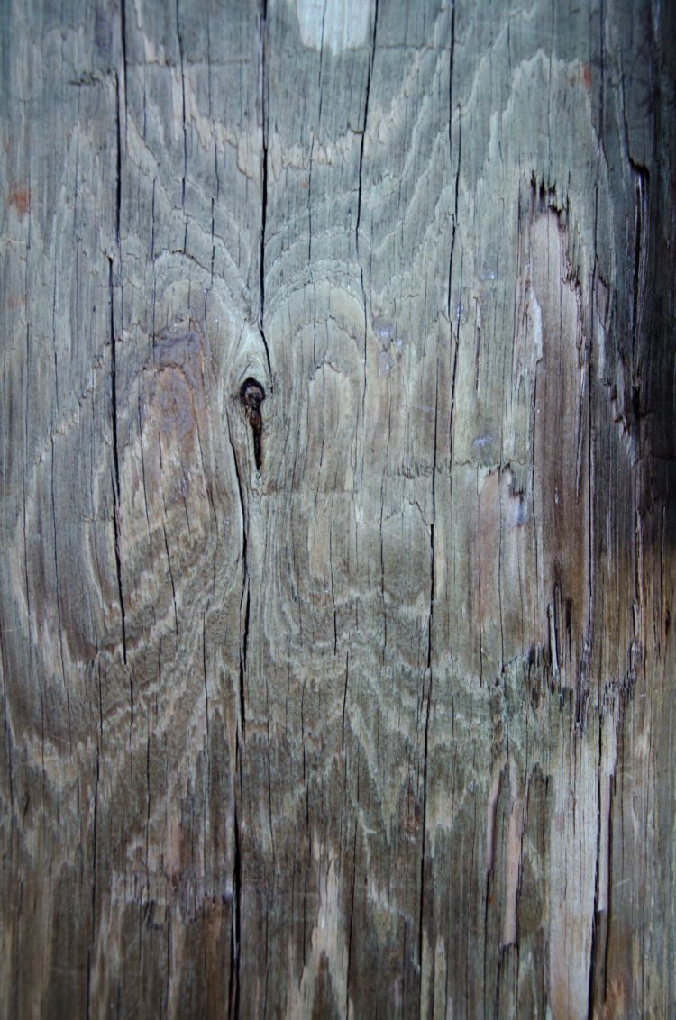 quilted wood texture