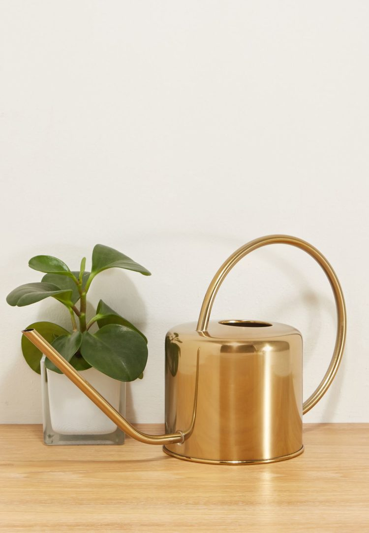watering can black