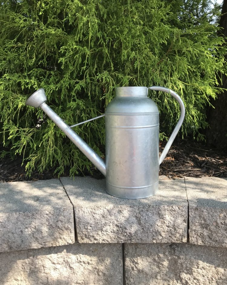 watering can cheap