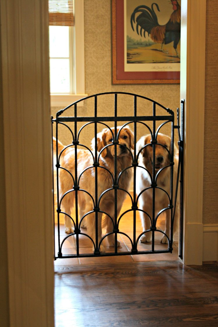 gate pet kennel