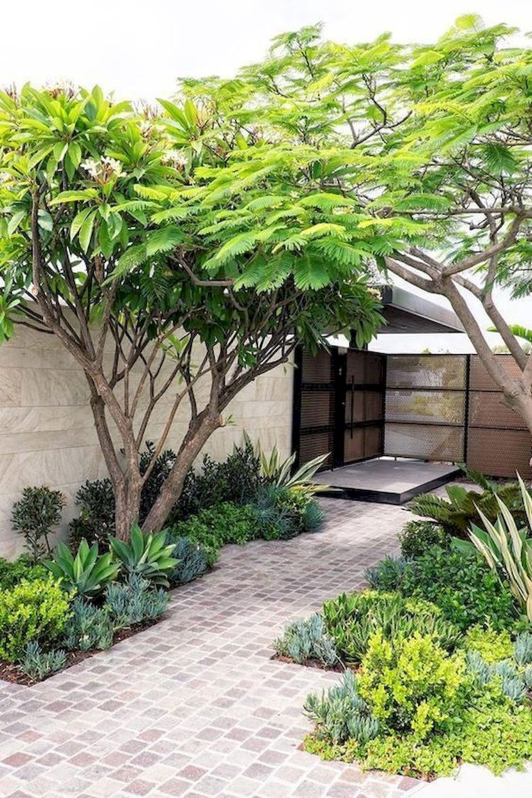 beautiful landscapes for small yards