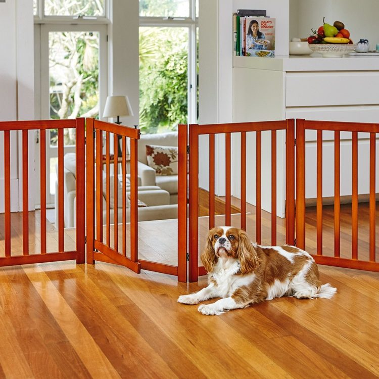 dog gates metal