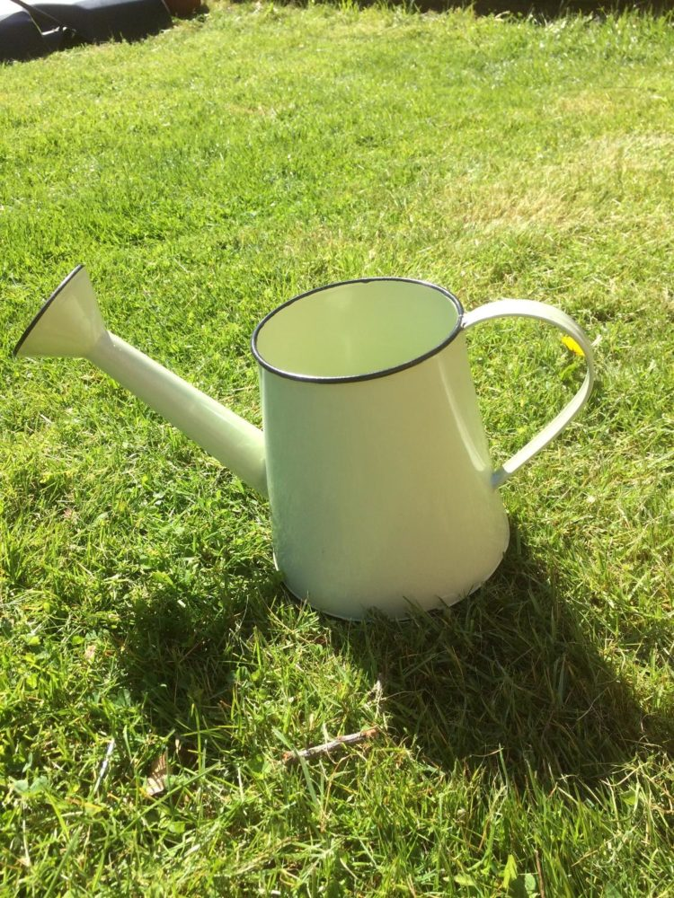 watering can cute
