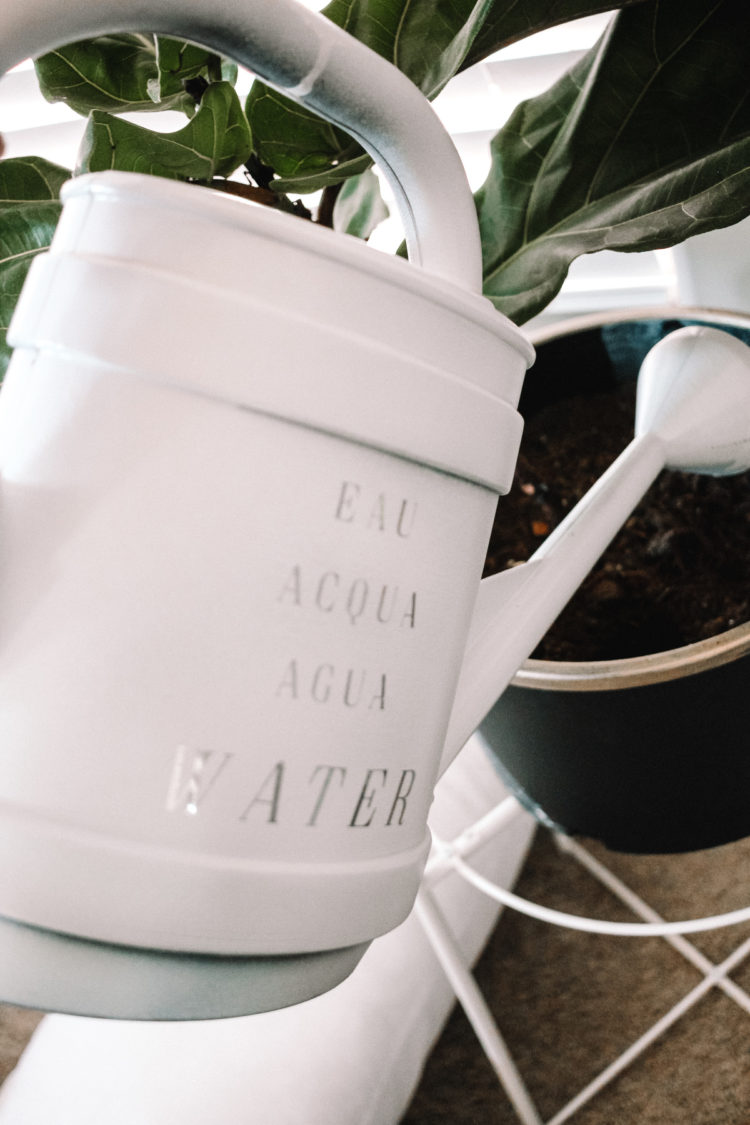 watering can definition