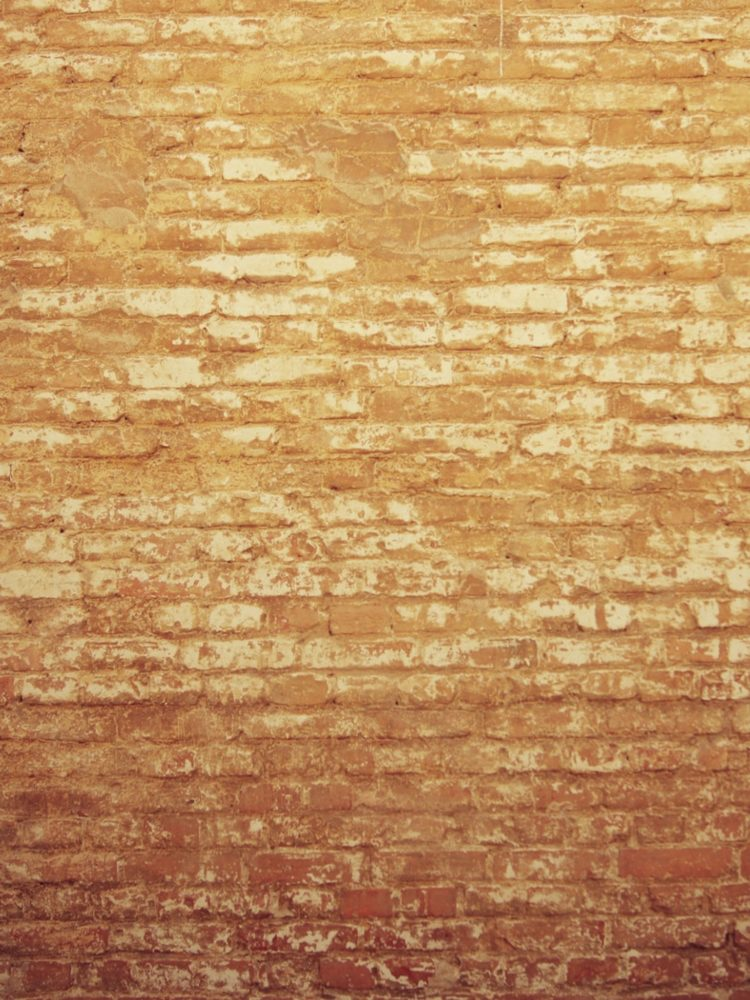brick wall background rustic