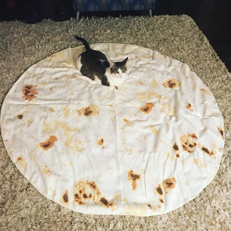 burrito blanket not shipped
