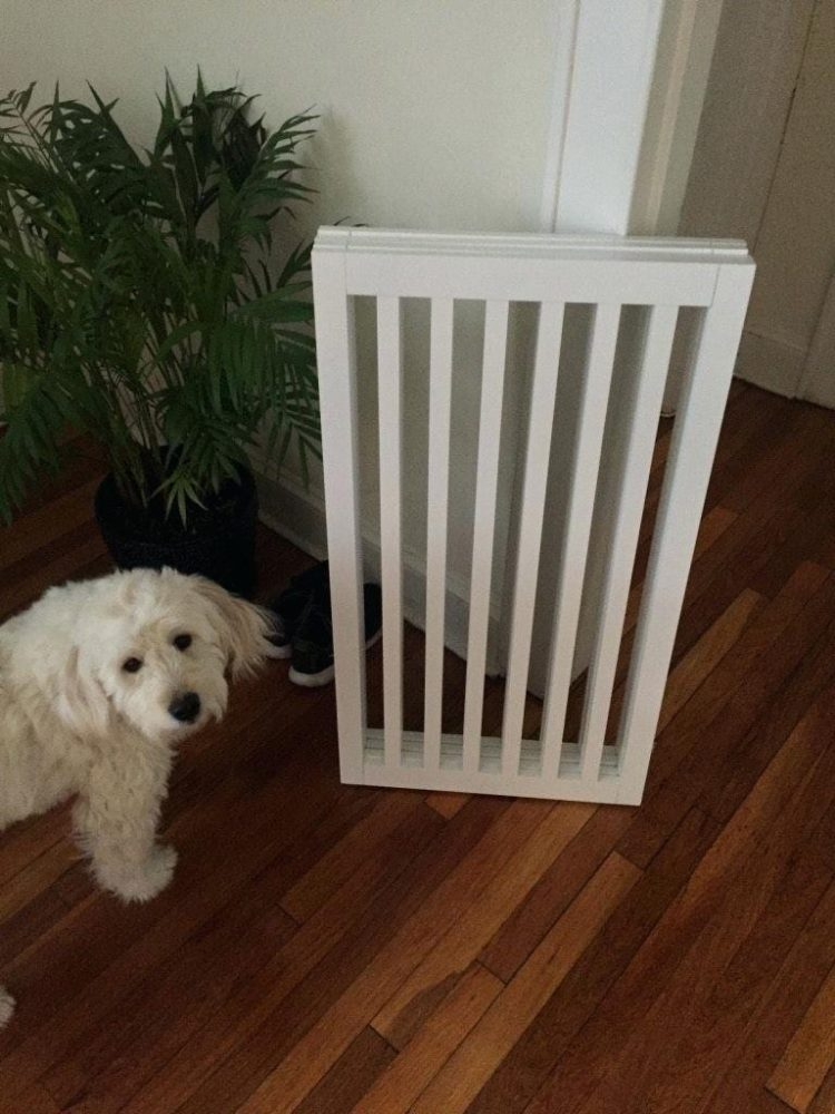 dog gate kennelgate