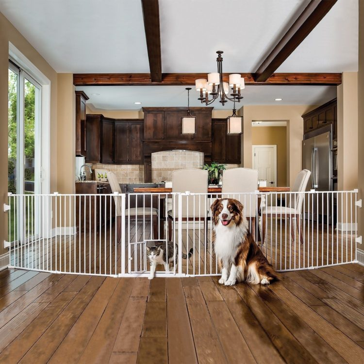 dog gates kitchen