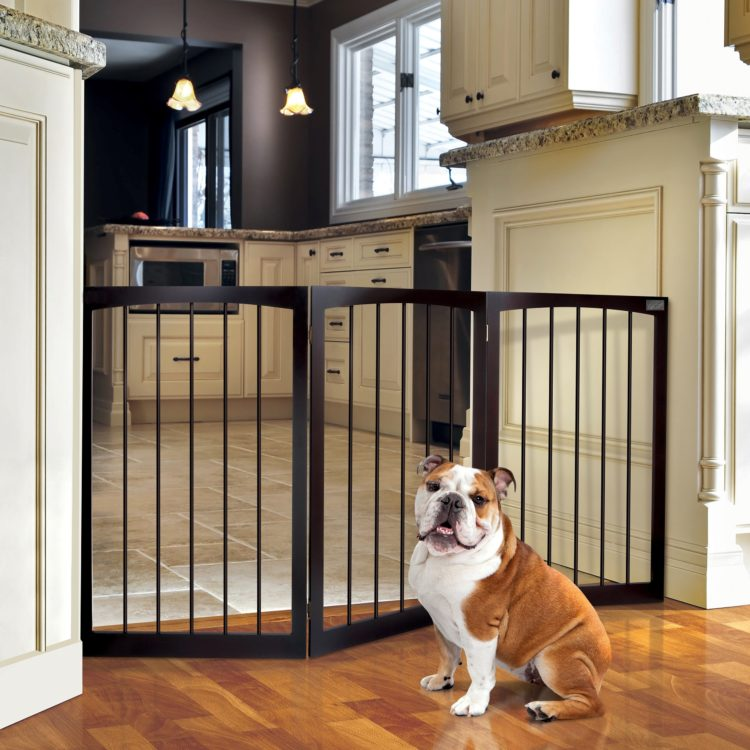 dog gates kmart