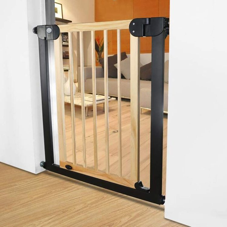dog jumps gate but not vacuum