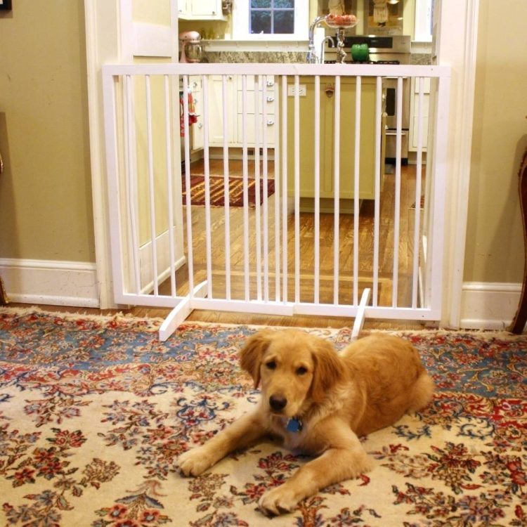 dog gates indoor home depot