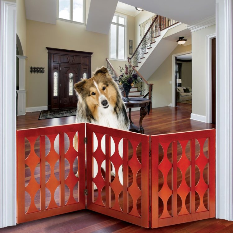 dog gates interior