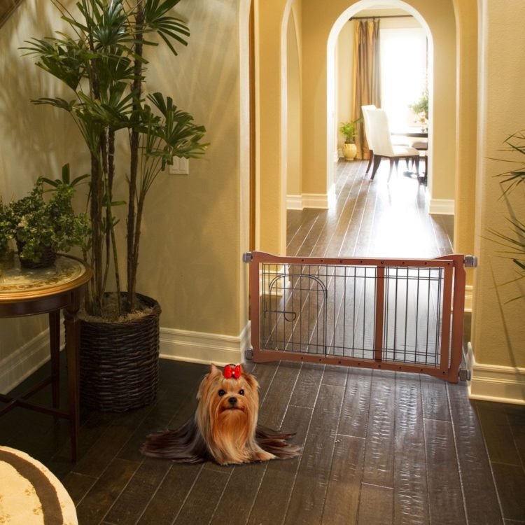 dog gates ideas