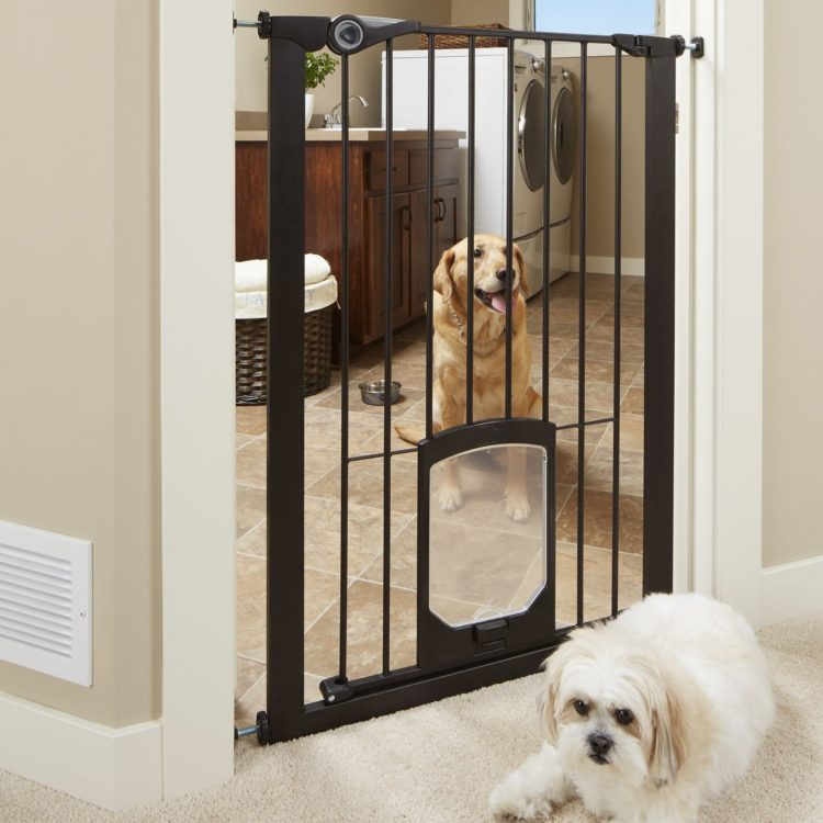 dog gates inside