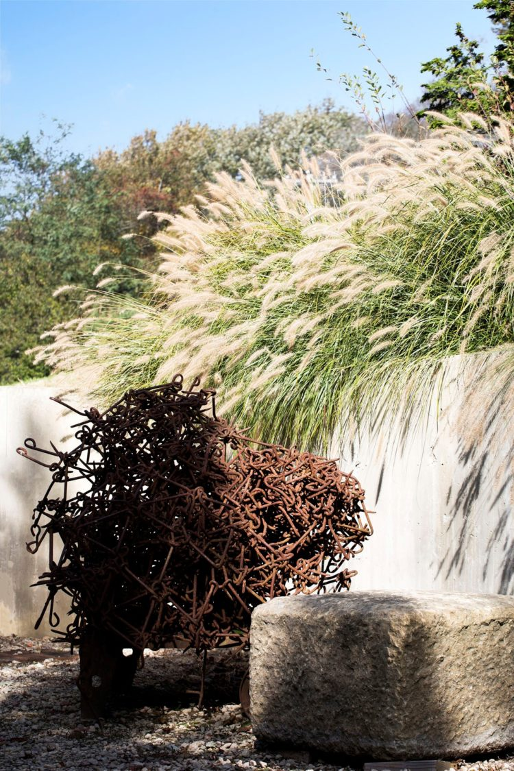 fountain grass landscaping