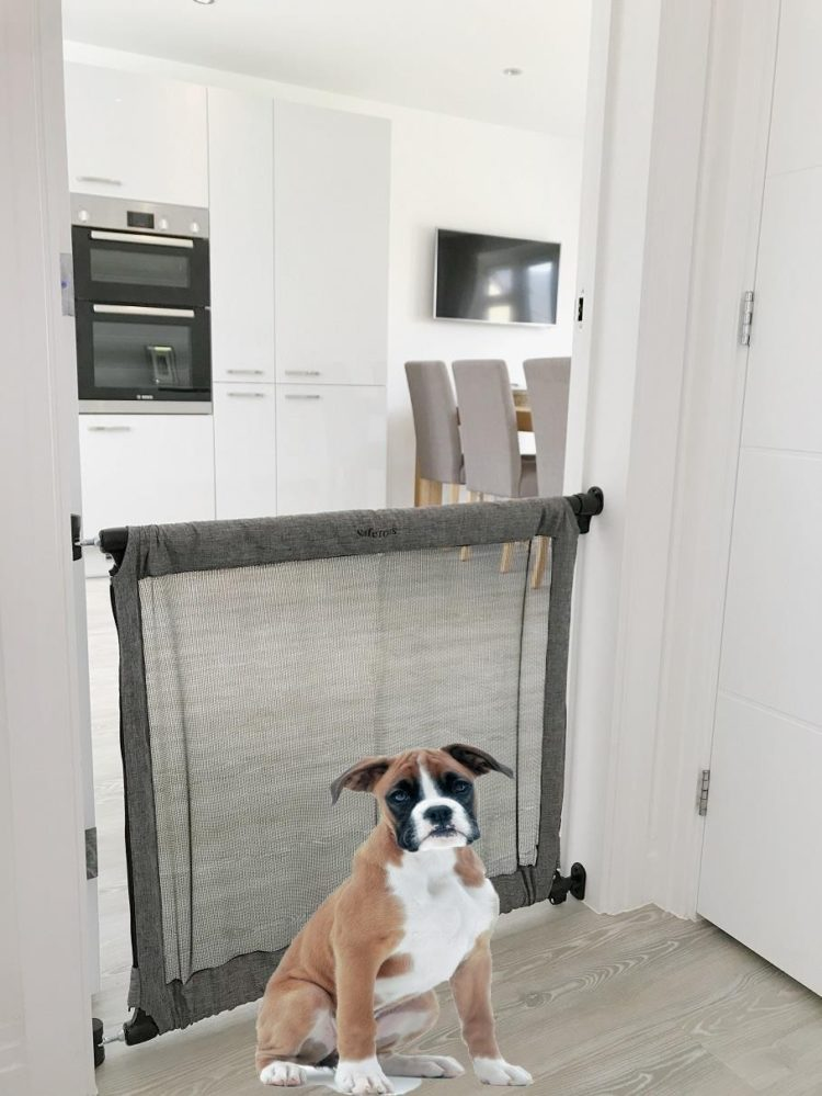 pet gate kuwait