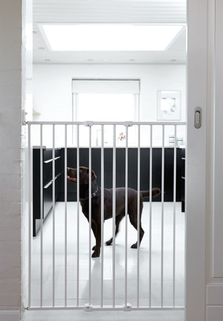 pet gate ideas for stairs