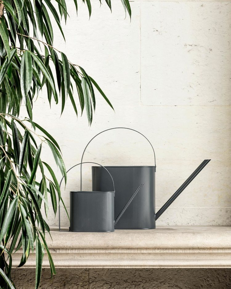 watering can for plants