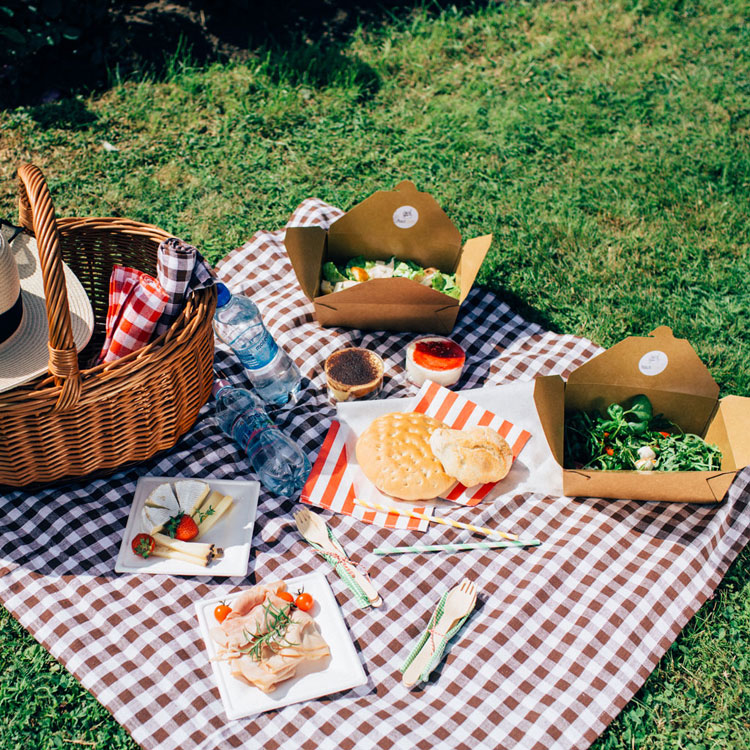 picnic blanket pottery barn