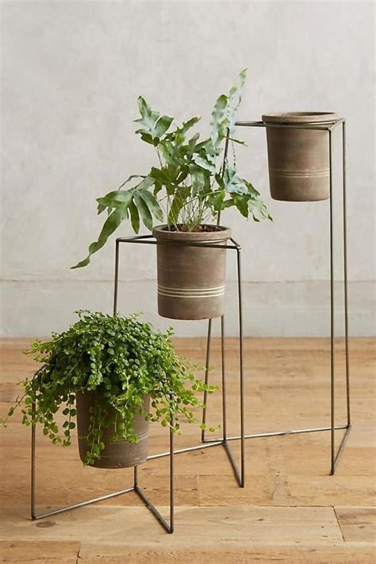 plant stand greenhouse