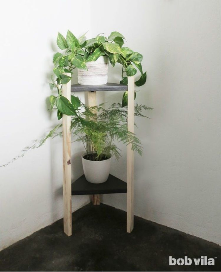 plant stand holder