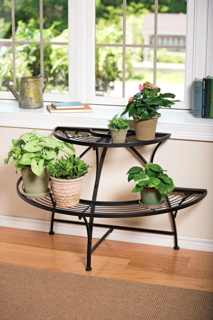 plant stand in front of window