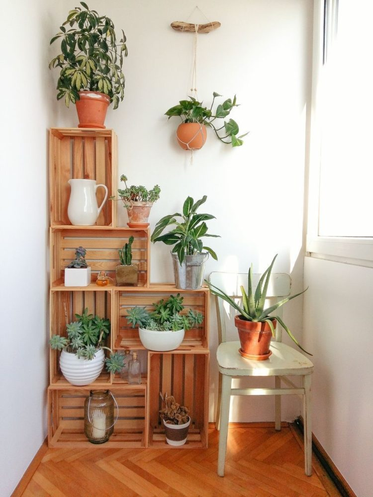 kmart plant stand