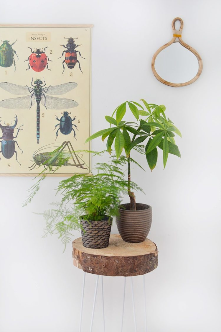 plant stand nesting tables
