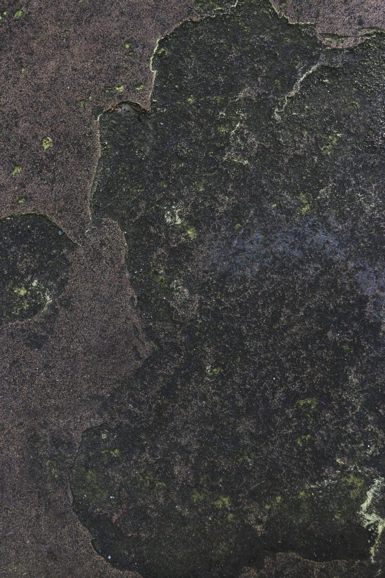 stone texture vector free download