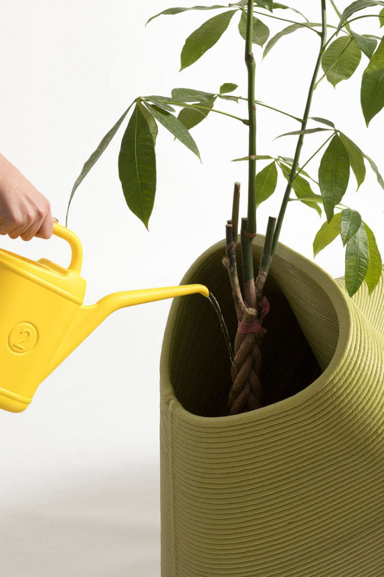 watering can gallon