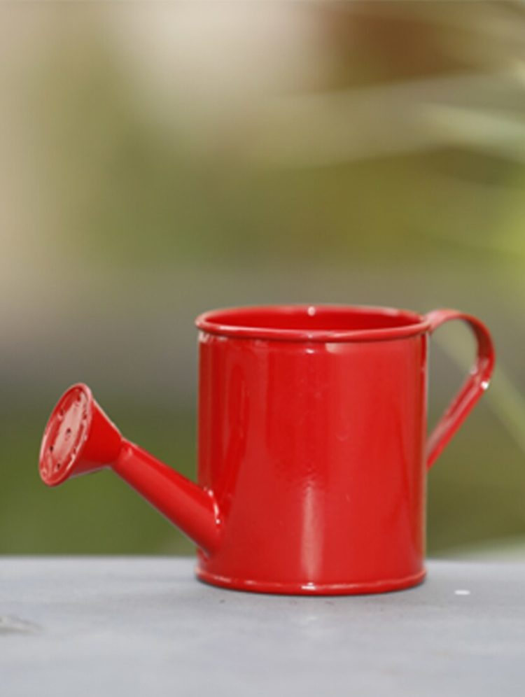 watering can gift