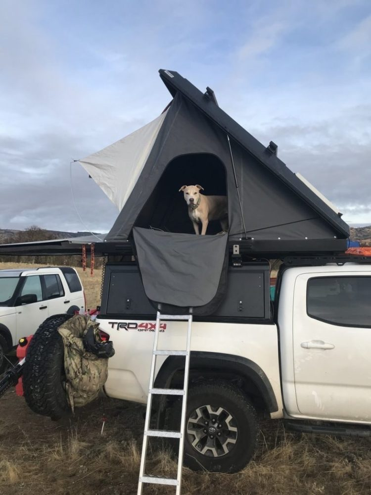truck bed tent review